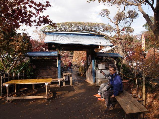 小林槭樹園