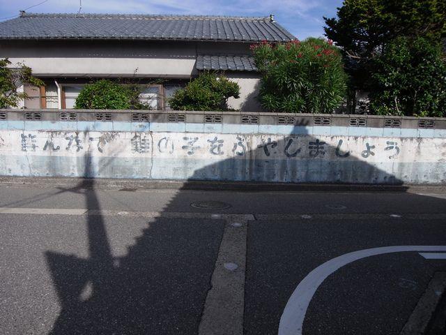 皆んなで 鮭の子をふやしましょう (新潟県村上市)