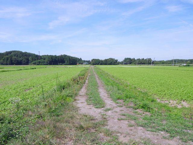 すばらしき農道 (福島県会津若松)
