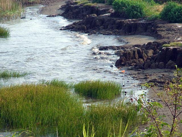 新砂 河口