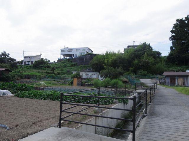 黒坪公園の西側段丘