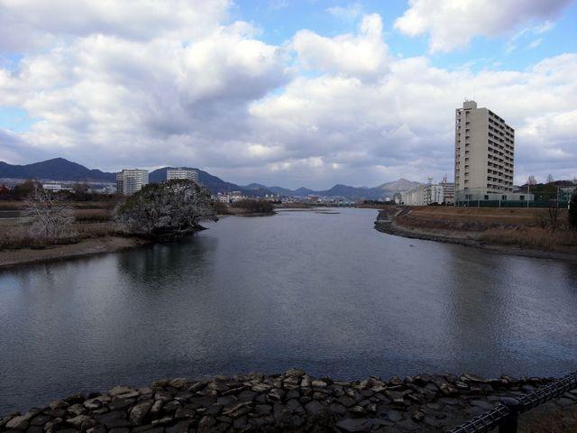 太田川・京橋川分流点 一本木鼻の水制