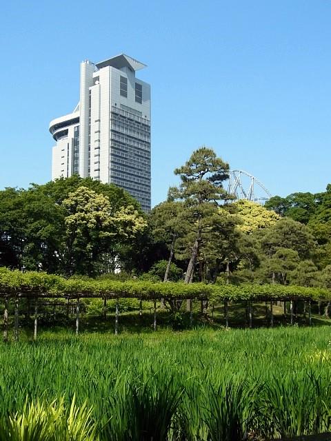 小石川後楽園から見た景色