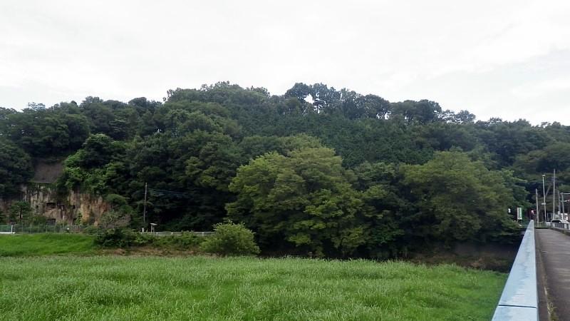 武蔵国松山城 遠景
