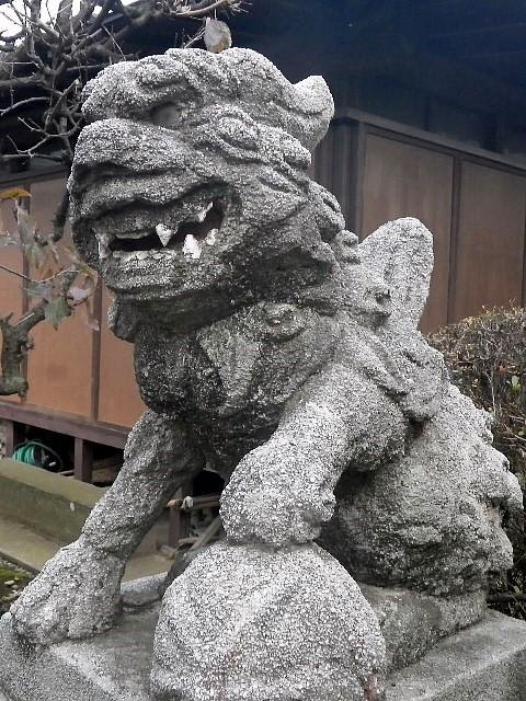 野火止若宮八幡 (埼玉県新座市) 狛犬
