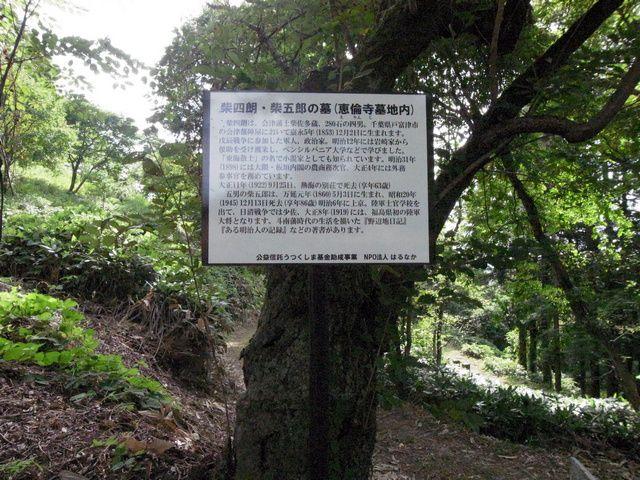 小田山 柴四郎・柴五郎の墓 説明板