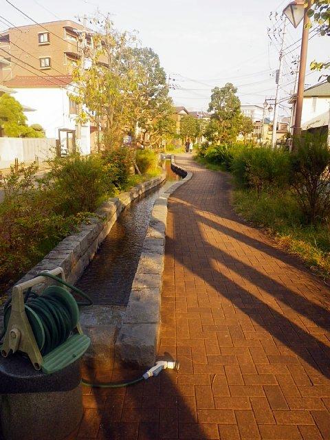 船圦川跡(千葉県浦安市)