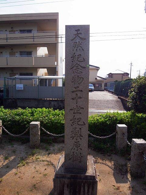二十世紀梨原樹が天然記念物指定されたときの碑