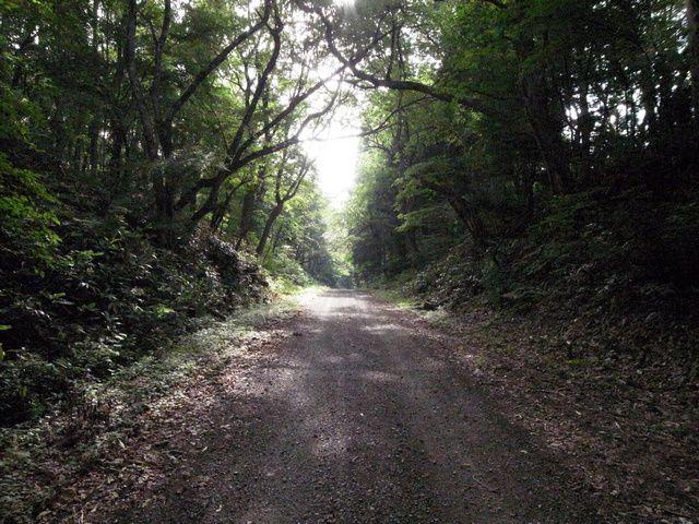 東北自然歩道