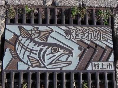 水をきれいに (新潟県村上市)