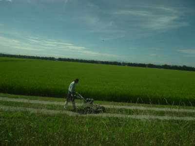 そこ、草刈するんだ (福島県)