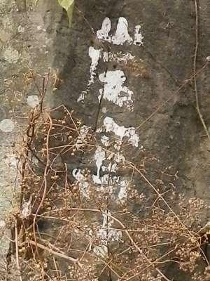 原尻の滝の岩富士
