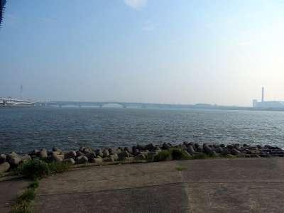 荒川・中川分流堤 河口