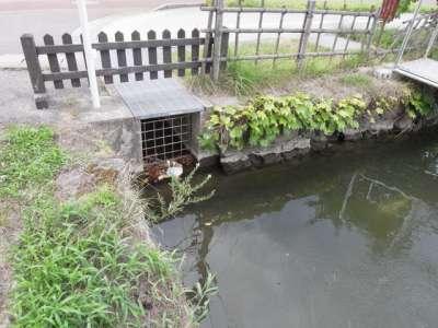 西側の濠の排水口