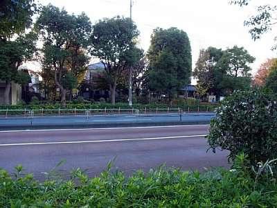葛西城を分断する道路