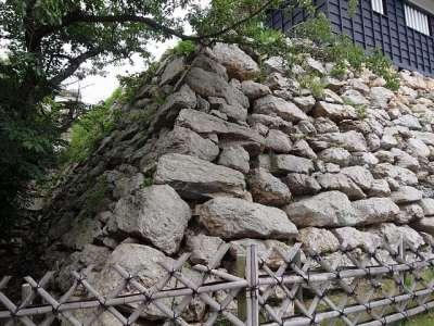 浜松城 石垣の石