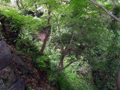 犬山城 北側登城道の跡 2017 年 8 月