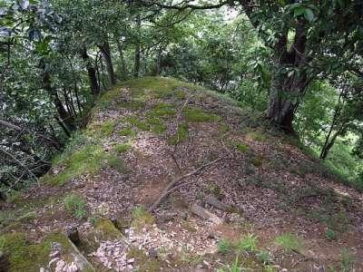 田和城(兵庫県養父市大屋) 主郭の西隣の曲輪