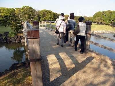 浜離宮 お伝い橋