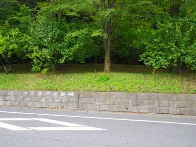 大谷口馬屋敷緑地(小金城)(松戸市)