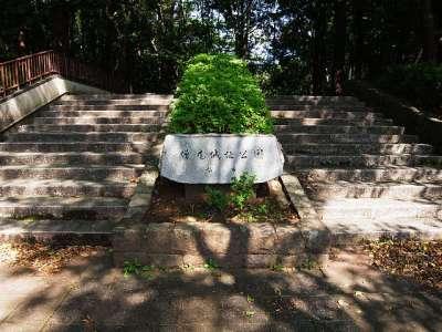 下総国 増尾城(千葉県柏市)