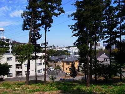下総国 松ヶ崎城(千葉県柏市)