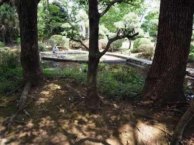 蕨城址 池