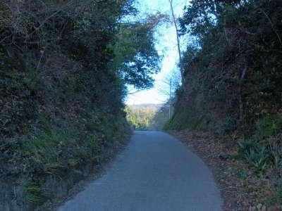 韮山城と天ヶ岳砦の間の大堀切