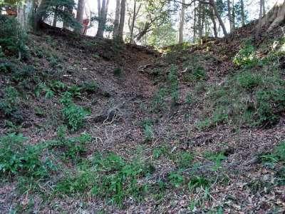 韮山城址 竪堀にも見えるが天然の地形かも。