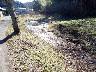韮山城址 現存水掘