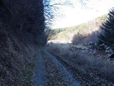 田口城への道(車道)