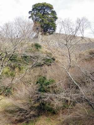 豊後 岡城 駐車場から見上げた岡城