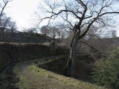 豊後 岡城 清水谷沿いの道