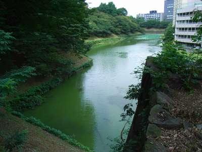 江戸城 牛ヶ淵