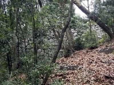 伊予松山城 登り石垣(県庁裏登城道)