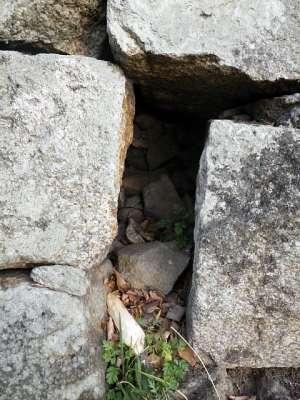 丸亀城 石垣の隙間