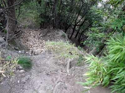 丸亀城 観光順路から外れた場所