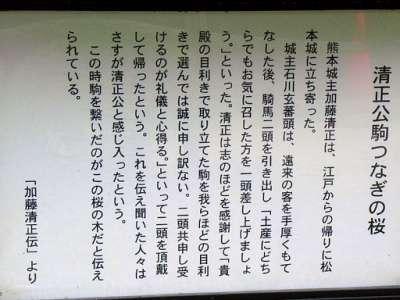 松本城 逸話