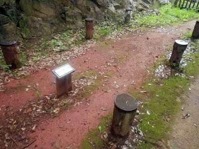 太田金山城 掘立柱跡