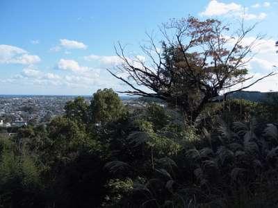 高鍋城 物見台跡からの眺め