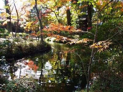 平林寺 放生池
