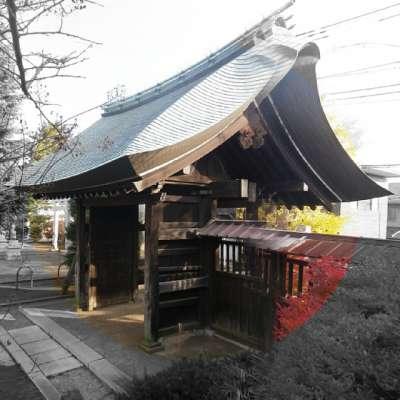 正福寺 2010-11-28 山門
