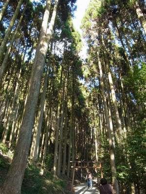 速川神社(宮崎県西都市)
