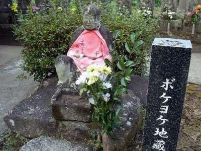 生善院(猫寺・熊本県水上村)