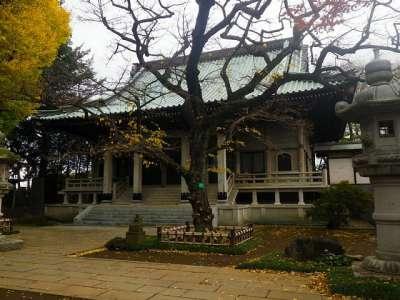 東圓寺(埼玉県朝霞市)