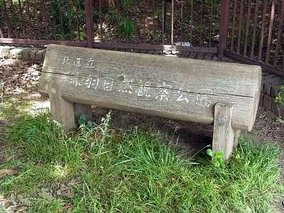 北区立赤羽自然観察公園