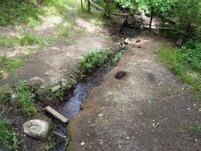 北区立赤羽自然観察公園 渓流