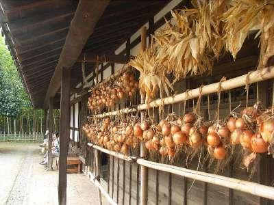旧和井田家住宅 (東京都足立区)