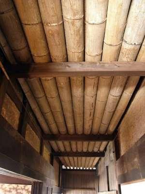 二見家住宅(宮崎県宮崎市) テノマの天井