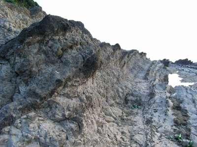 荒崎海岸波食岩群